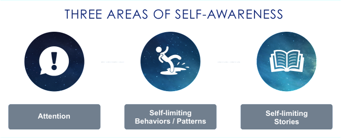 Self Awareness 3 Area