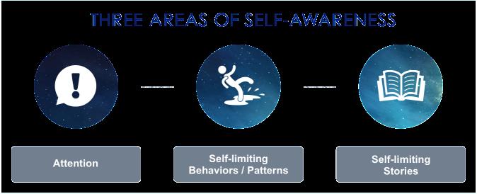 Self Awareness 3 Area